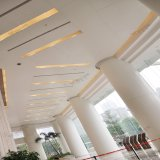 Panneau en aluminium en aluminium extérieur en verre de mur rideau de panneau de mur de revêtement de mur rideau de modèle neuf avec ISO9001