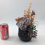 O Succulent artificial floresce bonsais da decoração