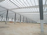 Edificio caliente de la estructura de acero de la luz de la venta en China