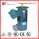 UmweltProtection WS Electric Motor mit Variable Frequency Drive