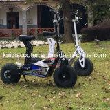 La motocicleta eléctrica 1600W Coc del nuevo neumático gordo del diseño certificó