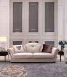 Sofa confortable de salle de séjour de tissu de tailles importantes chaudes de vente