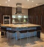 Gabinete de cozinha inteiro do armário ajustado para o projeto