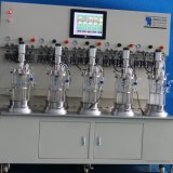 5 litri di fermentatore di vetro immobile di miscelatura meccanica