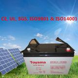 bateria profunda do AGM do ciclo do Profundo-Ciclo 100ah de 12VDC 100ah com garantia 5-Year