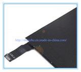 iPad 소형 2 3을%s 본래 LCD 스크린 전시