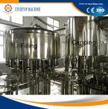 Machine mis en bouteille pareau de minéral carbonaté non, machine de remplissage de boissons