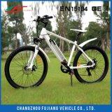 2017년 공장 가격 36V 250W 리튬 전기 자전거 장비