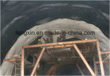 Membrana impermeável HDPE de alta capacidade de adaptação para o túnel rodoviário