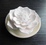 Los diversos colores y modelos para su elección de cerámica perfumada