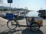 250With350With500W eléctricos o Pedal bicicleta del cargo de tres ruedas/cargo Trike/triciclo del cargo/triciclo del rodillo del helado/bici de la salida del rodillo de la bici/del helado del cargo