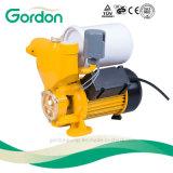 Inländische elektrische kupferner Draht-selbstansaugende Selbstpumpe mit Druckanzeiger