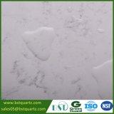 صلادة عامّة أبيض رخاميّة تقليد مربية حجارة مطبخ [كونترتوب]