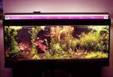 ETL LED approvato Dlc coltivano l'indicatore luminoso del tubo per la verdura 22W 1.2m