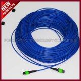 Fibre optique de 12 faisceaux MPO uni-mode blindé aux câbles de connexion de MPO
