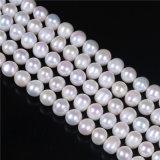 un hilo flojo blanco de la perla de la dimensión de una variable de la patata de la calidad 9m m 10m m