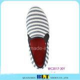 Ботинки холстины конструкции способа с зеброй напечатали