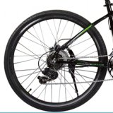 36V/250W BrushlessのハブMotor Electric Bicycle (LN26M07)