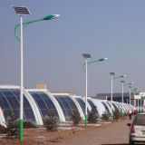 40W 8m Economical LED Solar Street Light