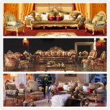 Sofá de la sala de estar con la silla del sofá para los muebles caseros (D962)