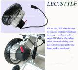 """24V 180W Spannungs-schwanzloser elektrischer Rollstuhl-Gang-Motor mit Rad 8 """" 10 """" 12 """""""