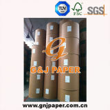 Papier enduit de poids léger mat en roulis