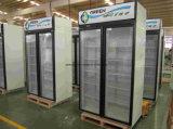 Refrigerador de vidro da bebida das portas do dobro novo do estilo com refrigerar dinâmico