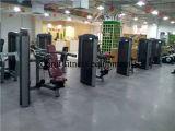 Máquina de la prensa del hombro del equipo de la gimnasia (XH901)