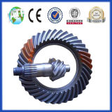 Nkr Spiral Bevel Gear in Auto Differenzial
