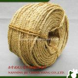 corde dell'imballaggio della corda del sisal della corda di 6-8mm 3ply Manila