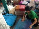 Plastikklage-Kasten-Gepäck, das Maschine bildet