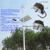 moteur à un aimant permanent de générateur de C.C de turbine de vent de 300W 12V 24V