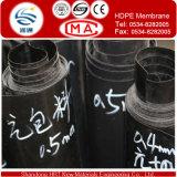 HDPE van de specificatie de Voering van de Vijver van Geomembrane voor Stortplaats