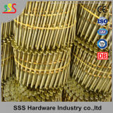 I chiodi del pallet hanno galvanizzato i chiodi dell'acciaio dei chiodi del tetto della bobina dei chiodi della bobina