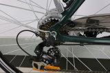 """2015 педаль Durable 26 """" помогла велосипеду города электрическому"""