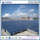 Comitato solare cinese del prodotto 250W con 20 anni di garanzia