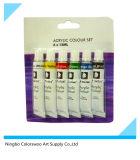 vernice acrilica non tossica dell'imballaggio della bolla 6*12ml in tubo di alluminio per