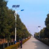 Réverbère solaire compétitif de la qualité 30~160W de modèle neuf pour la route/jardin (JINSHANG SOLAIRES)