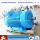 Мотор большого AC напряжения тока и силы электрический