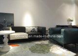 Итальянская самомоднейшая софа дома софы цветка ткани типа (D-73-A+B)