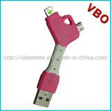 Nouveauté 2 en 1 câble de remplissage du trousseau de clés USB pour l'iPhone, Samsung