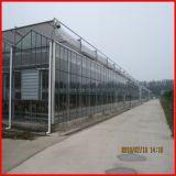 중국 공급자 판매를 위한 농업 PC 장 온실