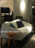 Sofà domestico moderno del tessuto del salone di nuovo stile 2015 (D-76B)
