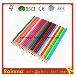 Eco 7  School Stationery를 위한 Plastic Color Pencil