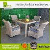 Muebles al aire libre que cenan el conjunto para el jardín