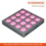 에너지 절약 600W 가득 차있는 스펙트럼은 LED 램프를 증가한다