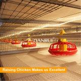 Il pollame automatico gestisce la strumentazione della tettoia per il pollo da carne