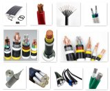 0.6/1kv XLPE/PVC에 의하여 격리되는 전기 직류 전원 케이블