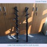 5.5mm Louver vidrio con Mistlite con diseño de vidrio