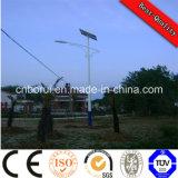 15W--160W zonneStraatlantaarn met het Controlemechanisme en de Batterij van het Zonnepaneel